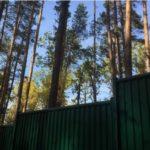 Секреты «элитных» ульяновских садоводов и огородников: халявная земля, незаконное строительство и прочие блага