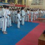 Единоборства с бюрократией. Ульяновских тренеров уволили после жалоб на руководство
