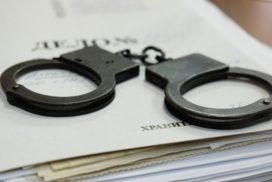 Директор ульяновского магазина лишена свободы за нападение на инспектора по делам несовершеннолетних