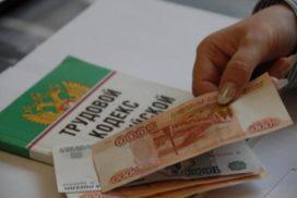 Аграриям новомалыклинского района выплатили долги по зарплате